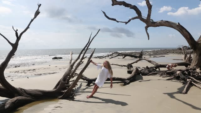 children exploring driftwood beach - bikini bottom stock videos & royalty-free footage