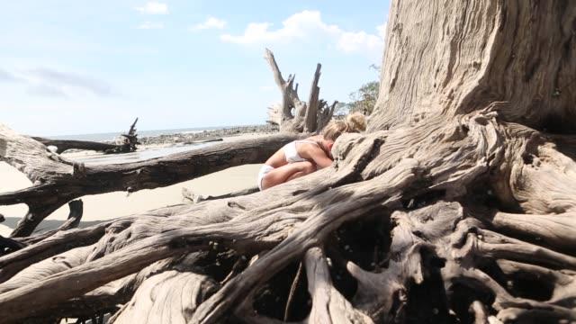 children exploring driftwood beach - bikinihose stock-videos und b-roll-filmmaterial