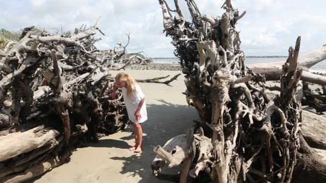 vídeos y material grabado en eventos de stock de children exploring driftwood beach - cabello recogido