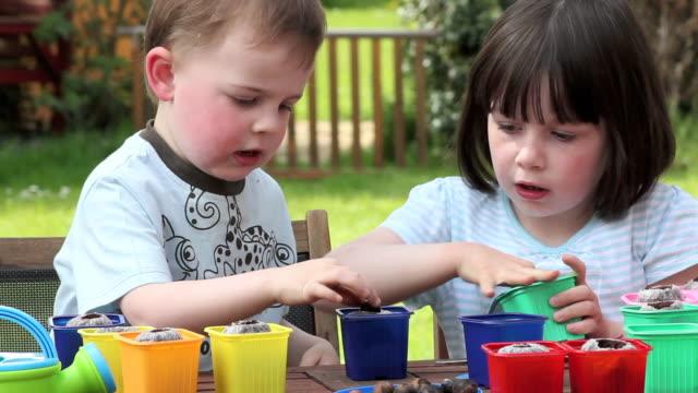 Children gardening planting seeds