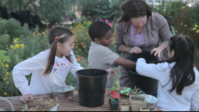 stockvideo's en b-roll-footage met ms children gardening with teacher / los angeles, california, united states - breedbeeldformaat