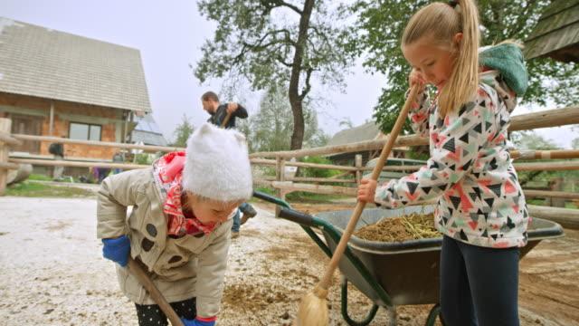 vídeos y material grabado en eventos de stock de niños a conocer la vida en el campo, barriendo el piso, en un rancho - barrer