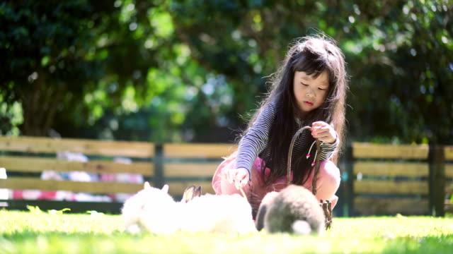 Kinder Mädchen ihre kleine Kaninchen zu füttern