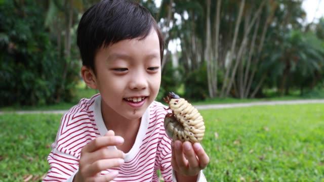 vídeos de stock e filmes b-roll de children have a beetle - gatinhar