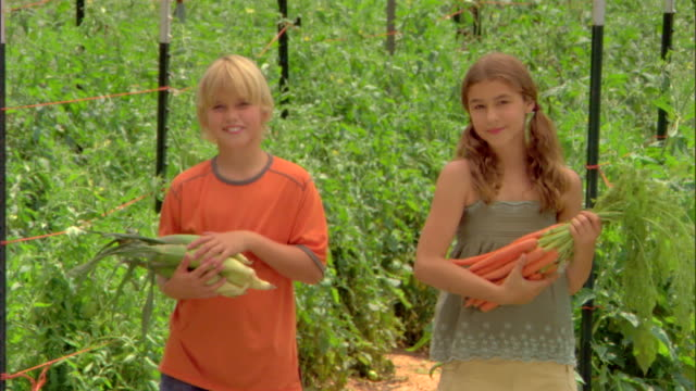 children holding bunches of produce - see other clips from this shoot 1425 stock videos and b-roll footage