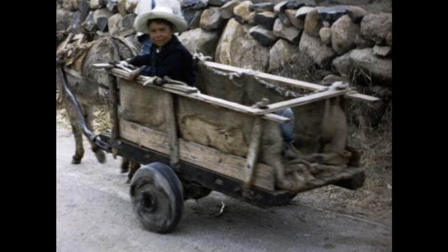 vidéos et rushes de children in denim overalls sitting on a donkey pulled cart looking at the camera cart followed by a white dog - salopette