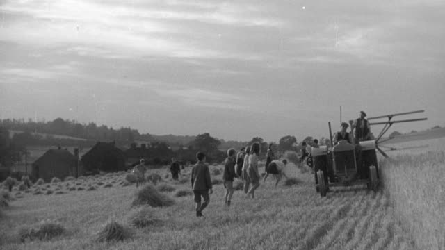 1940 montage children in hayfield gathering hay in bundles while farmers cut and drop hay with tractor and swather / united kingdom - 干し草点の映像素材/bロール