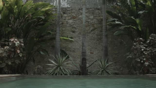 vídeos y material grabado en eventos de stock de children jumping in pool together - mérida méxico