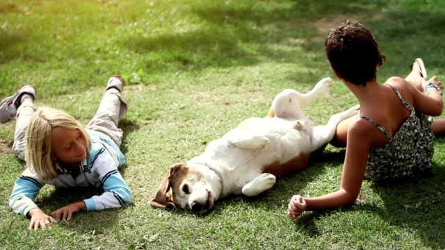 Children laying on the grass with annoying dog