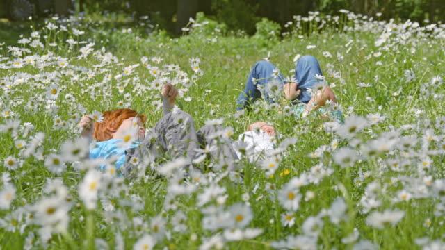 slo-mo-ds-kinder liegen unter gänseblümchen - liegen stock-videos und b-roll-filmmaterial