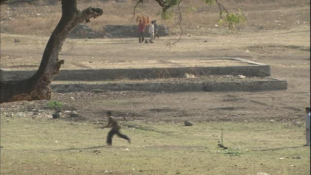 vídeos y material grabado en eventos de stock de children play cricket in park, india - bate de críquet