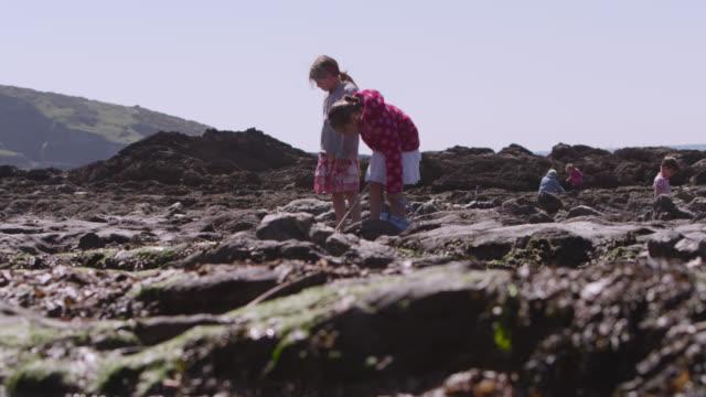 Children play in rock pools on beach, Devon, England