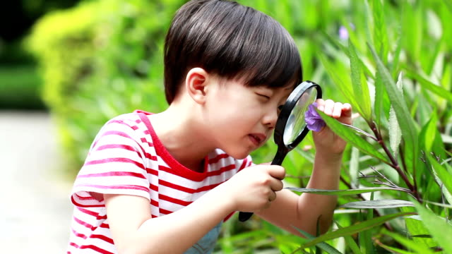 children play with a magnifying glass - magnifying glass stock videos & royalty-free footage