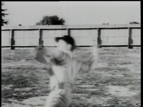 children playing baseball / detroit, michigan - moving process plate stock videos & royalty-free footage
