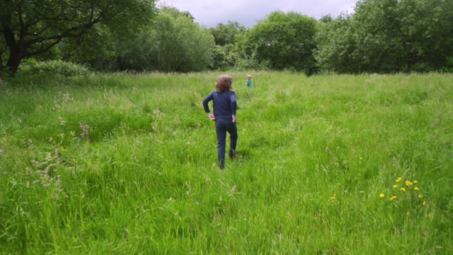 children playing hide and seek in long grass in a park - hide and seek stock videos and b-roll footage