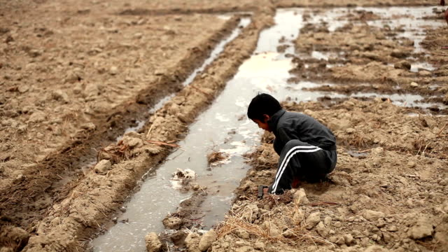 children playing in wet soil - hamlet play stock videos and b-roll footage