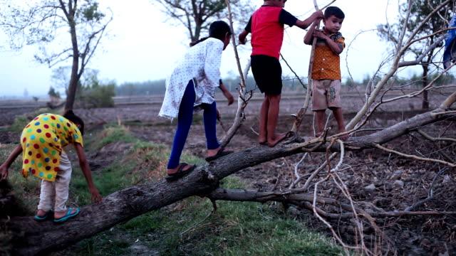 Kinder spielen mit umgestürzten Baum
