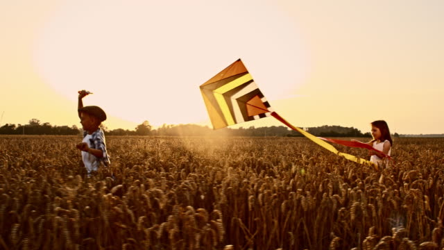 slo mo children playing with kite in wheat field - kite toy stock videos and b-roll footage