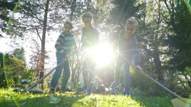 children raking autumn leaves - leaf stock videos & royalty-free footage