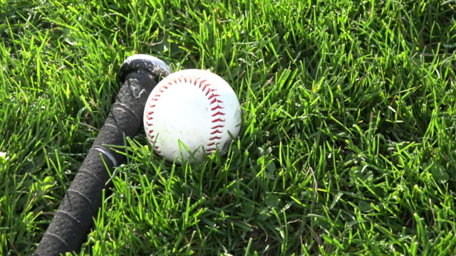 Children recreation outdoors: a baseball and a bat lay on the green grass of a field before the start of the friendly game