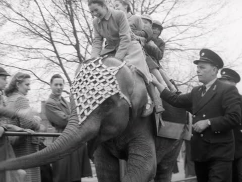 Children ride an elephant at London Zoo