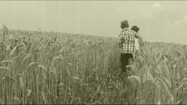 vídeos y material grabado en eventos de stock de hd cámara lenta: niños corriendo en el campo de trigo - imagen virada