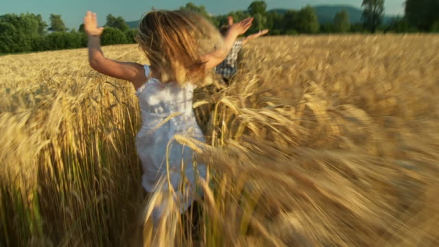 hd slow-motion: children running in wheat - agricultural field stock videos & royalty-free footage