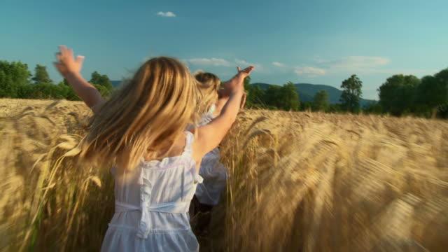 hd-kran: kinder laufen in wheat - agrarbetrieb stock-videos und b-roll-filmmaterial