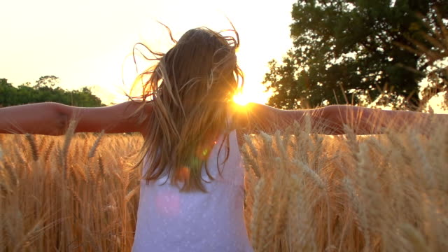 hd super slow-motion: children running in wheat - joy stock videos & royalty-free footage