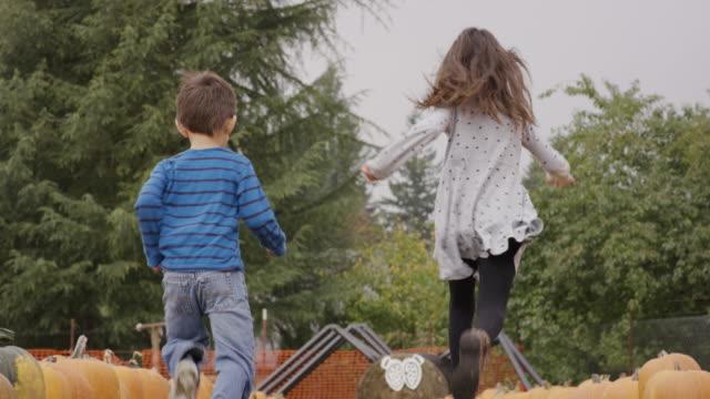 children running through pumpkin patch celebrating autumn - harvest festival stock videos & royalty-free footage