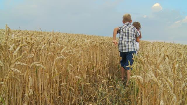 SLOW MOTION HD: Bambini in esecuzione attraverso un campo di grano