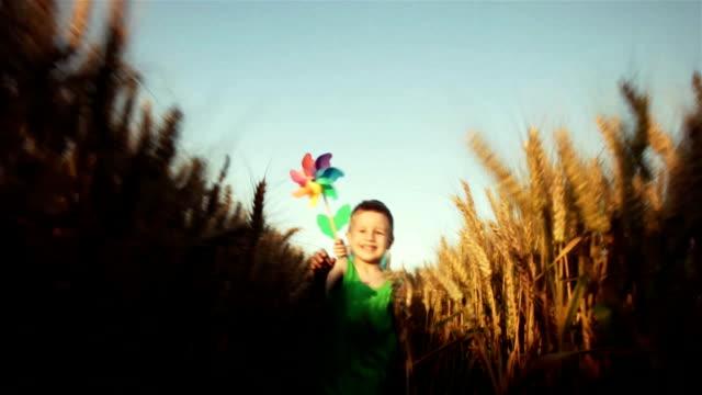 bambini correre attraverso grano - girandola video stock e b–roll
