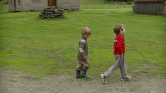 ms pan children (2-7) walking in farm / stowe, vermont, usa     - stowe vermont stock videos & royalty-free footage
