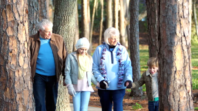 children walking in park with grandparents - grandparent stock videos and b-roll footage