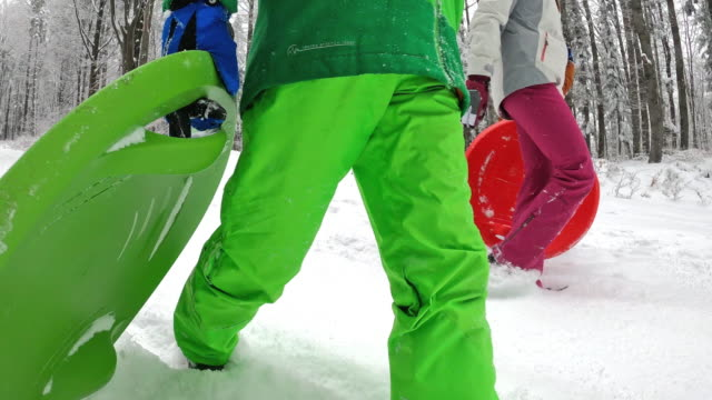 children walking with sleds in winter forest. - imgorthand stock videos & royalty-free footage