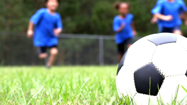 children's soccer team players run toward ball on playing field. - football pitch stock videos and b-roll footage