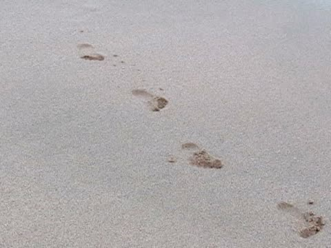 Child's footprints in the sand.