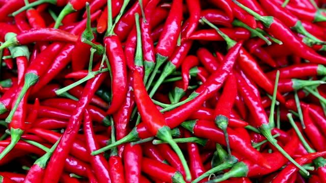 vídeos de stock, filmes e b-roll de pimenta cozinha tailandesa, tailândia - pimenta