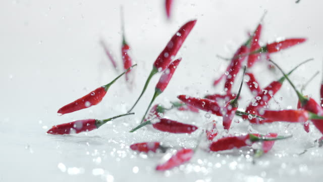 slo mo ld chili peppers falling onto watery surface - pepper vegetable stock videos and b-roll footage