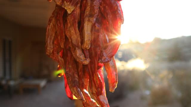 chili ristra at sunset - 赤唐辛子点の映像素材/bロール