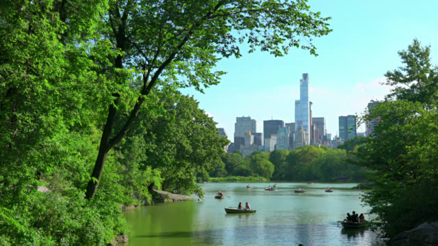 chill in the central park - central park manhattan stock videos & royalty-free footage