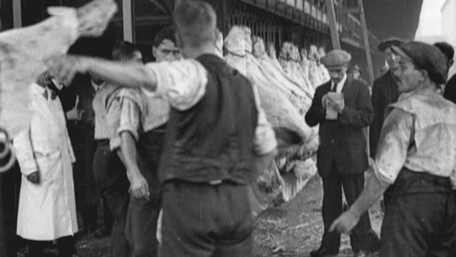 1917 montage chilled beef carcasses being handled on the docks with conveyor belts / united kingdom - 1917 stock videos & royalty-free footage