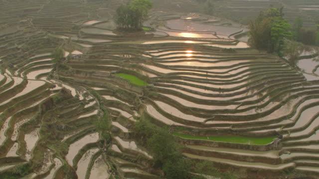 vidéos et rushes de china: aerial view of flooded rice paddies - rizière