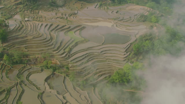 China: Aerial view of flooded rice paddies