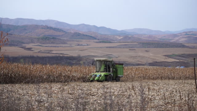 vídeos y material grabado en eventos de stock de china announced fullscale agricultural modernization but the import demand will not decline in the near future due to the population growth income... - noreste de china
