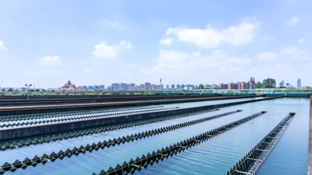 china asian city waterworks - aquatic plant stock videos & royalty-free footage