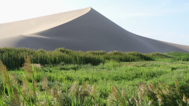 China, Dunhuang, view of the Ming Sha Lan (Singing Sands Dunes)