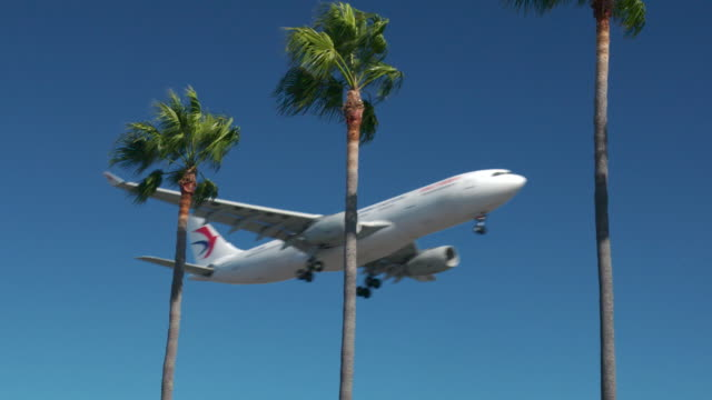 china eastern airlines - tropical climate stock videos & royalty-free footage