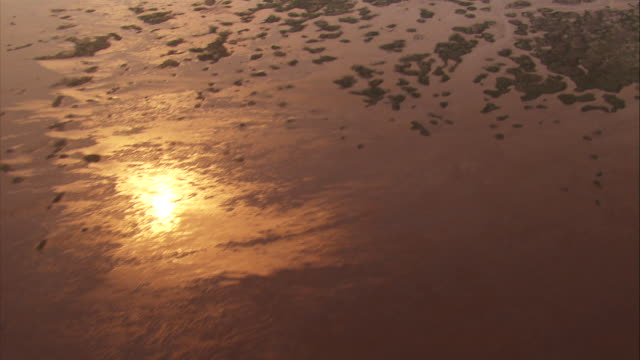 china, shanghai: sea and huangpu river - seaweed stock videos & royalty-free footage