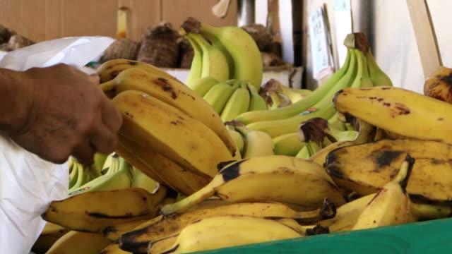 チャイナタウン、サンフランシスコ、農産物市場バナナズ - 熟した点の映像素材/bロール